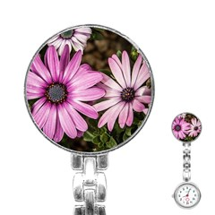 Beautiful Colourful African Daisies  Stainless Steel Nurses Watches by OZMedia