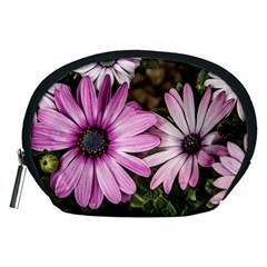 Beautiful Colourful African Daisies  Accessory Pouches (medium)  by OZMedia