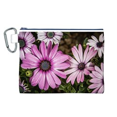 Beautiful Colourful African Daisies  Canvas Cosmetic Bag (l) by OZMedia