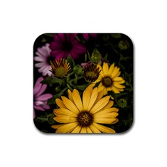 Beautiful Colourful African Daisies  Rubber Square Coaster (4 Pack)  by OZMedia