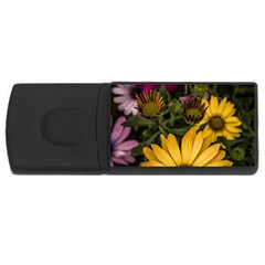 Beautiful Colourful African Daisies  Usb Flash Drive Rectangular (4 Gb)  by OZMedia
