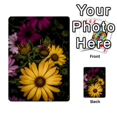 Beautiful Colourful African Daisies  Multi Purpose Cards (rectangle)  by OZMedia