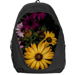 Beautiful Colourful African Daisies  Backpack Bag by OZMedia