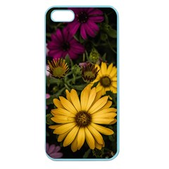 Beautiful Colourful African Daisies  Apple Seamless Iphone 5 Case (color) by OZMedia