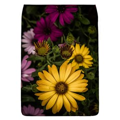 Beautiful Colourful African Daisies  Flap Covers (l)  by OZMedia