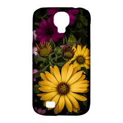 Beautiful Colourful African Daisies  Samsung Galaxy S4 Classic Hardshell Case (pc+silicone) by OZMedia