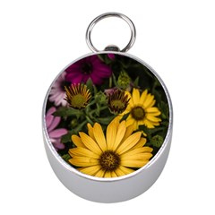Beautiful Colourful African Daisies  Mini Silver Compasses by OZMedia