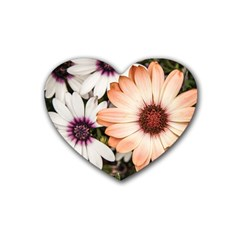Beautiful Colourful African Daisies Rubber Coaster (heart)  by OZMedia