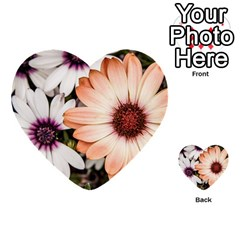 Beautiful Colourful African Daisies Multi Purpose Cards (heart)