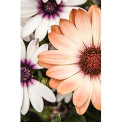 Beautiful Colourful African Daisies 5 5  X 8 5  Notebooks by OZMedia