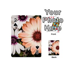 Beautiful Colourful African Daisies Playing Cards 54 (mini)  by OZMedia