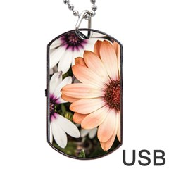 Beautiful Colourful African Daisies Dog Tag Usb Flash (two Sides)  by OZMedia