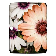 Beautiful Colourful African Daisies Samsung Galaxy Tab 3 (10 1 ) P5200 Hardshell Case  by OZMedia