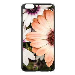 Beautiful Colourful African Daisies Apple Iphone 6 Plus/6s Plus Black Enamel Case by OZMedia