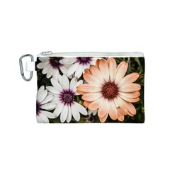 Beautiful Colourful African Daisies Canvas Cosmetic Bag (s) by OZMedia