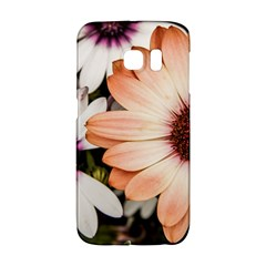 Beautiful Colourful African Daisies Galaxy S6 Edge by OZMedia