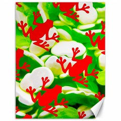 Box Of Frogs  Canvas 18  X 24   by essentialimage