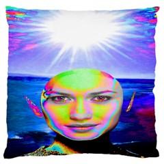 Sunshine Illumination Large Flano Cushion Cases (two Sides)  by icarusismartdesigns