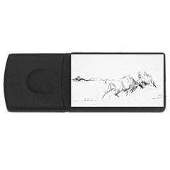 Buffalo / Bison Gift Usb Flash Drive Rectangular (4 Gb) by TwoFriendsGallery
