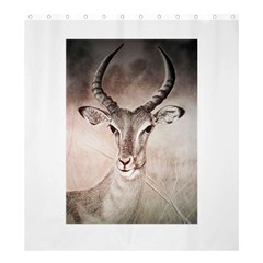 Antelope Horns Shower Curtain 66  X 72  (large)