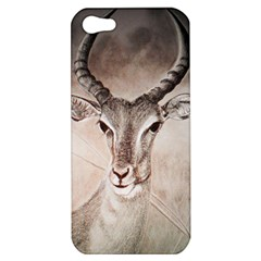 Antelope Horns Apple Iphone 5 Hardshell Case by TwoFriendsGallery