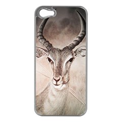 Antelope Horns Apple Iphone 5 Case (silver) by TwoFriendsGallery