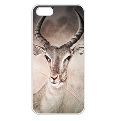 Antelope Horns Apple Iphone 5 Seamless Case (white) by TwoFriendsGallery