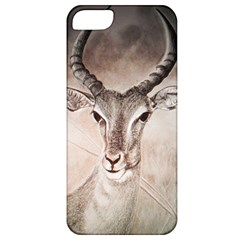 Antelope Horns Apple Iphone 5 Classic Hardshell Case by TwoFriendsGallery