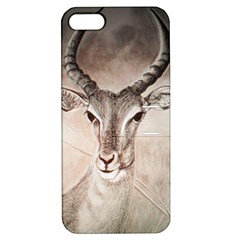 Antelope Horns Apple Iphone 5 Hardshell Case With Stand by TwoFriendsGallery