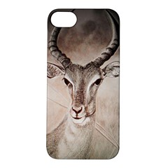 Antelope Horns Apple Iphone 5s Hardshell Case by TwoFriendsGallery