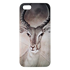 Antelope Horns Iphone 5s Premium Hardshell Case by TwoFriendsGallery
