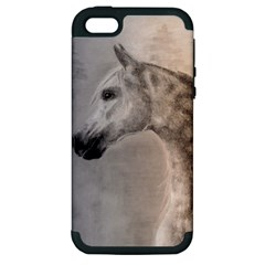 Grey Arabian Horse Apple Iphone 5 Hardshell Case (pc+silicone) by TwoFriendsGallery