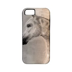 Grey Arabian Horse Apple Iphone 5 Classic Hardshell Case (pc+silicone) by TwoFriendsGallery