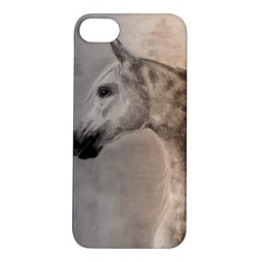 Grey Arabian Horse Apple Iphone 5s Hardshell Case by TwoFriendsGallery