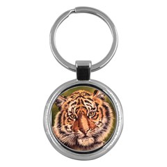 Tiger Cub Key Chains (Round)  by ArtByThree