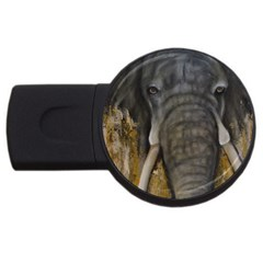 In The Mist Usb Flash Drive Round (4 Gb)  by timelessartoncanvas