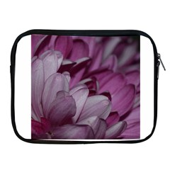 Purple! Apple Ipad 2/3/4 Zipper Cases by timelessartoncanvas