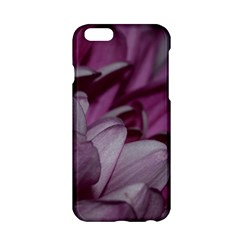 Purple! Apple Iphone 6/6s Hardshell Case by timelessartoncanvas
