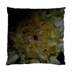 Yellow Flower Standard Cushion Case (One Side)  by timelessartoncanvas