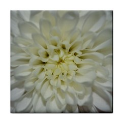 White Flowers Tile Coasters by timelessartoncanvas