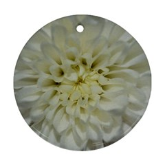 White Flowers Ornament (round)  by timelessartoncanvas