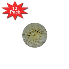 White Flowers 1  Mini Buttons (10 Pack)  by timelessartoncanvas