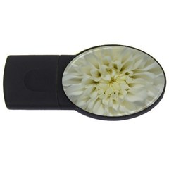 White Flowers Usb Flash Drive Oval (4 Gb)  by timelessartoncanvas