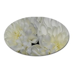 White Flowers 2 Oval Magnet by timelessartoncanvas