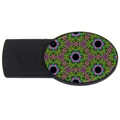 Repeated Geometric Circle Kaleidoscope Usb Flash Drive Oval (2 Gb)  by canvasngiftshop