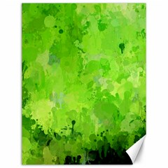 Splashes Of Color, Green Canvas 12  X 16   by MoreColorsinLife