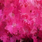 Splashes Of Color, Hot Pink Laugh Live Love 3D Greeting Card (8x4)  Inside