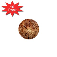 Cross Section Of An Old Tree 1  Mini Buttons (10 Pack)  by trendistuff