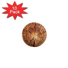 Cross Section Of An Old Tree 1  Mini Magnet (10 Pack)  by trendistuff