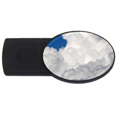 Big Fluffy Cloud Usb Flash Drive Oval (2 Gb)  by trendistuff
